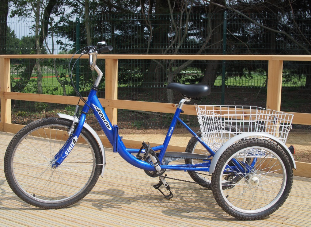 A blue adult size tricycle on a wooden platform